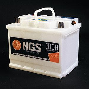 NGS - Automotive Battery